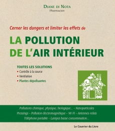 la pollution de l air int 233 rieur diane de nota